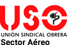 USO Sector Aéreo Logo